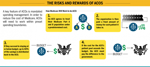 ACO-Prescription-Cure-or-Disease-Infographic-hitconsultant.png