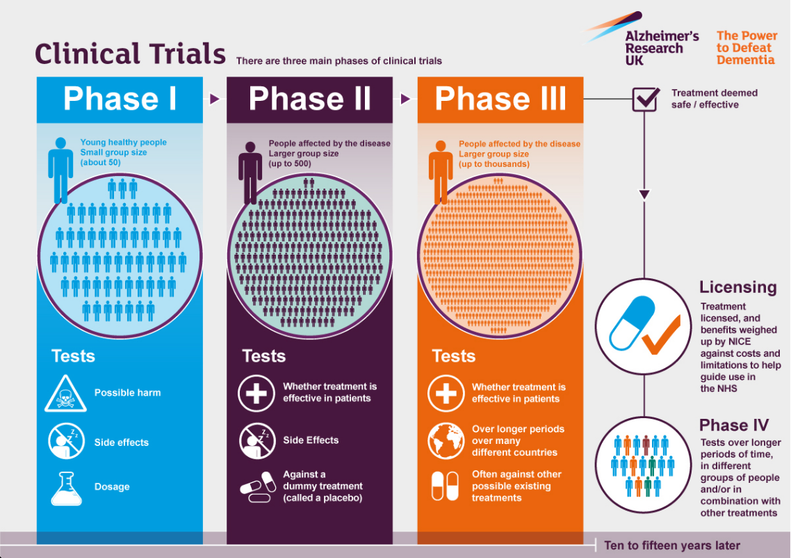 Clinical-trial-phases.png